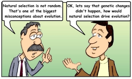 THE TRUE ROLE OF NATURAL SELECTION AND VARIATION