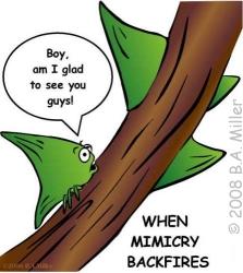 Mimicry ws